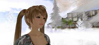 Secondlifereleasecandidate_081126_0